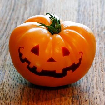 Jack-o-lantern-Amana-Tomato-72dpi